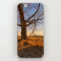 country iPhone & iPod Skins featuring Country by Scottie Williford