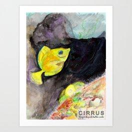 CIRRUS/ Surgeonfish Art Print
