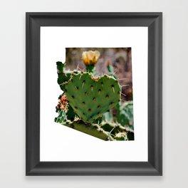 Sonoran Love / Arizona Framed Art Print
