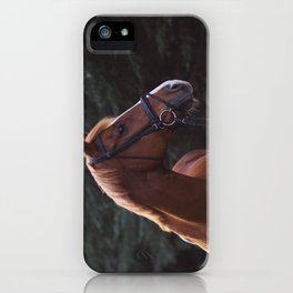 henry.  iPhone Case