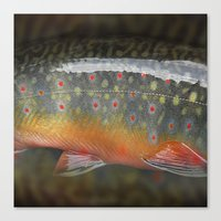 trout Canvas Prints featuring Trout by sorshag
