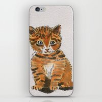 whisky iPhone & iPod Skins featuring Whisky, the Kitty by Gersin@Albatrostudio