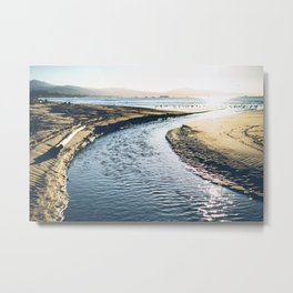 Drift Wood Beach Metal Print