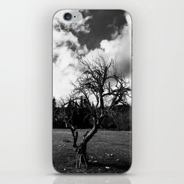 Dried Tree Photograph iPhone Skin