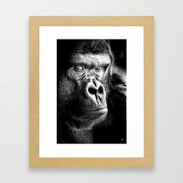 Gorilla, Cover Shot, Framed Art Print