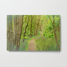 FOREST PEACE Metal Print