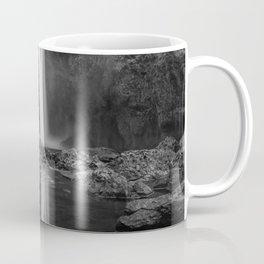 Reflecting Falls Coffee Mug