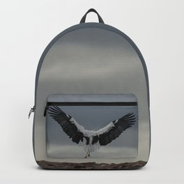 Spread your wings and land Backpack