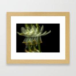 Blurring the flower Framed Art Print