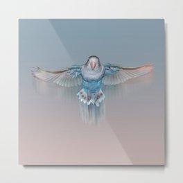 Pale blue flying lovebird Metal Print