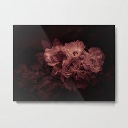 dark rose Metal Print