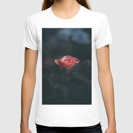 Single Pink Rose Bloom In Darkness T-shirt