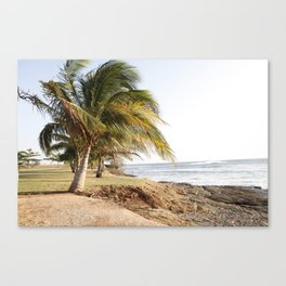 Costa Rican Coastline Canvas Print