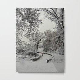 Curvature. Metal Print