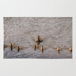 Mother Duck with Ducklings Rug