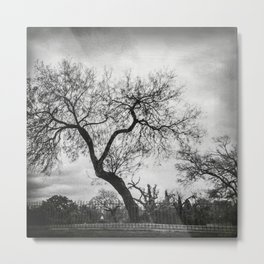 The creepy tree in the graveyard  Metal Print
