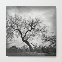 The creepy tree in the graveyard Metal Print