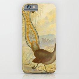Vintage Print - The Birds of Australia (1891) - Lyre Bird iPhone Case