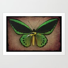 Be - Winged Art Print