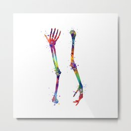 Arm Bones Anatomy Art Humerus Radius Ulna Thenar Medical Gift Anatomical Decor Chiropractor Gifts Metal Print