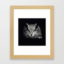 owl chouette 2 Framed Art Print