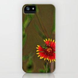 Indian Blanket w/Friend iPhone Case