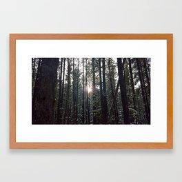 Cold Snap Framed Art Print