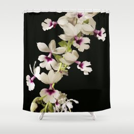 Calanthe rosea Orchid Shower Curtain