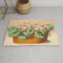 Cyclamen Atkinsil Vintage Botanical Floral Flower Plant Scientific Illustration Rug