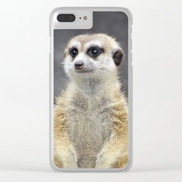 On Sentry Duty Clear iPhone Case