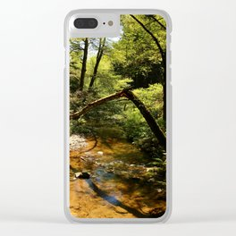 Muir Woods Impression Clear iPhone Case