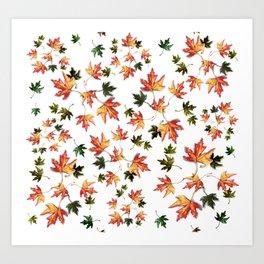 Leaves of trees - Autumn nature / Fall season Art Print