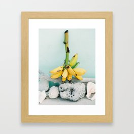 Tropical Bananas - Bahamas - Travel Photography Framed Art Print