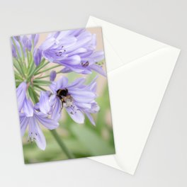 occupied ! Stationery Cards