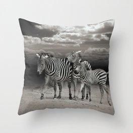 Wild Zebra Socialising in Africa                                      Throw Pillow