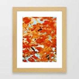 Fish Chaos Framed Art Print