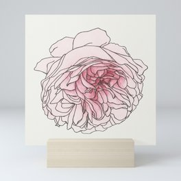 Pale Pink Rose Mini Art Print