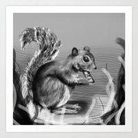 Rx Squirrel  Art Print