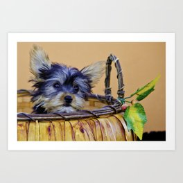 Tiny Yorkshire Terrier Puppy Leaning His Head on the Edge of a Pumpkin Basket Art Print