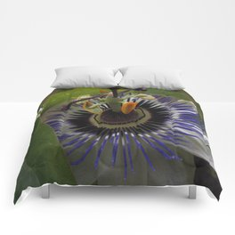 Side View of Beautiful Passiflora Flower Comforters
