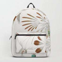 Ernst haeckel cepepoda Backpack