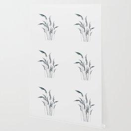 Wild grasses Wallpaper