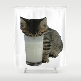 Cute Wild Kitten With A Glass Full of Optimism Shower Curtain