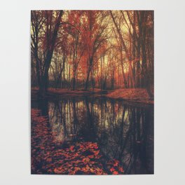 Where are you? Autumn Fall - Autumnal forest Poster