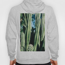 You are Pricking Awesome Hoody