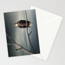 Lone Eagle Stationery Cards
