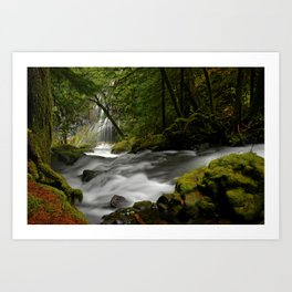 Panther Creek Falls Art Print