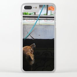 Ocho the dog Clear iPhone Case