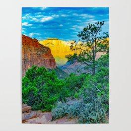 Zion National Park Sunrise Pines Print Poster