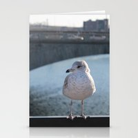 charlie Stationery Cards featuring Charlie by Chris Cooch